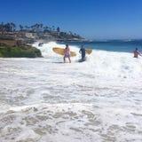 surfa waves Arkivbilder