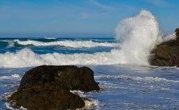surfa wild Fotografering för Bildbyråer