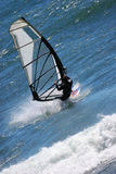surfa wind Arkivbild