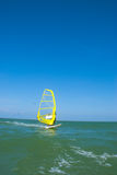 surfa wind Royaltyfria Foton