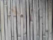 Surface of bamboo wall. Surface of the joints of small bamboo Royalty Free Stock Photo