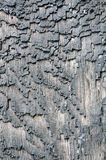 Surface bark of trees damaged by fire Stock Photo