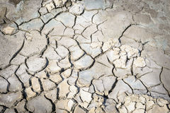 Surface of a barren ground textured background. Stock Photography