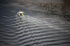 Surface bleue plissée de mer blanche photographie stock libre de droits