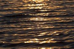 Surface brillante de l'eau de coucher du soleil de couleur chaude sans couture de texture Photographie stock libre de droits