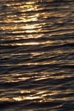 Surface brillante de l'eau de coucher du soleil de couleur chaude sans couture de texture Photos libres de droits