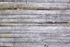 Surface of brown hardwood. Royalty Free Stock Image