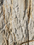 Surface of brown stone Stock Image