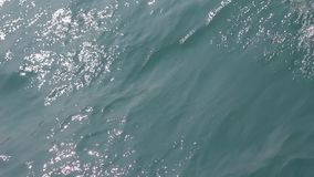 The surface of the calm ocean with small waves. stock video