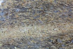 Surface of a carbonate rock Royalty Free Stock Photography