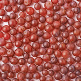 Surface covered with the dark red grapes Royalty Free Stock Images