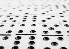Surface covered with gray dominoes bones Stock Image