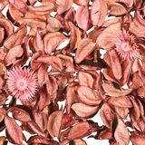 Surface covered with medley potpourri Stock Photos