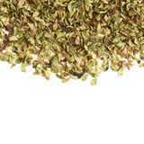 Surface covered with oregano seasoning Stock Image