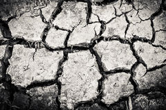 Surface crack texture Stock Photos