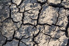 Surface of cracked earth for texture background, dried clay. Pattern royalty free stock photography