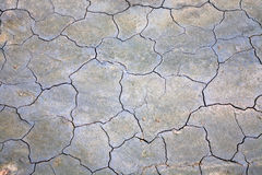 Surface of cracked ground Stock Images