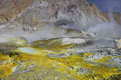 Surface of the crater of an active volcano. New Zealand. Stock Photos