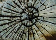 Surface criquée de bois dans les modèles abstraits pour le fond Photographie stock