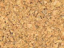 Surface from crumb of cork. Royalty Free Stock Image