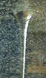 Surface de circulaire de l'eau photo stock