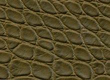 Surface de cuir foncé de crocodile Fond Photo libre de droits