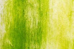 Surface de la mousse verte sur le mur images libres de droits