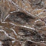 Surface de marbre Image stock
