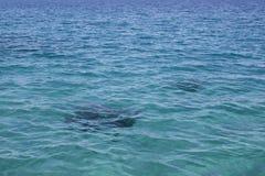 Surface de mer photographie stock