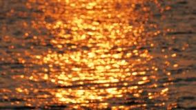 Surface de mer colorée d'or, image brouillée clips vidéos