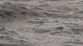 Surface de mer d'océan banque de vidéos