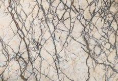 Surface de plan rapproché de grande roche pour la décoration à l'arrière-plan de texture de jardin Photos stock