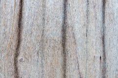 Surface de porte de pliage de maison thaïlandaise photo libre de droits