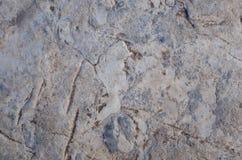 Surface de roche Photo libre de droits