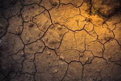 The surface of the dried earth, covered with cracks. Soft selective focus royalty free stock photo