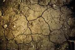 The surface of the dried earth, covered with cracks. Soft selective focus royalty free stock images