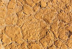 Surface of dry clay Stock Images