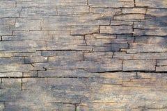 Surface en bois criquée Image libre de droits