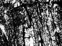 Surface en bois détaillée d'écorce Texture en bois d'écorce Texture âgée de panneau de bois de construction Photographie stock