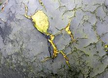 Surface en bois endommagée qui ressemblent à un diable courant photos stock