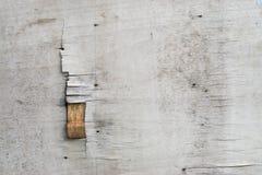 Surface en bois molle blanche comme fond Images libres de droits