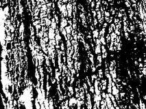 Surface en bois sale d'écorce Texture en bois d'écorce Texture âgée de panneau de bois de construction Photo libre de droits