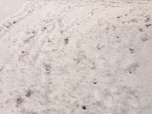 Surface full view of snow on ground with footsteps texture winte Royalty Free Stock Photo