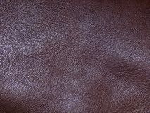 The surface of genuine leather. Close up Stock Photography