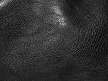 The surface of genuine leather. Close up Royalty Free Stock Images