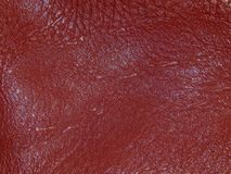 The surface of genuine leather. Close up Stock Image