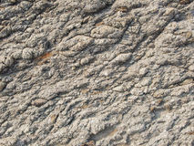 Surface of grey stone Stock Images