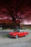 Surface intérieure brute 70 de VW Karmann Photographie stock libre de droits