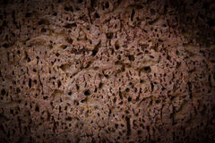Surface of laterite Stock Photography