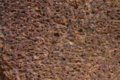 Surface of the laterite Royalty Free Stock Photo